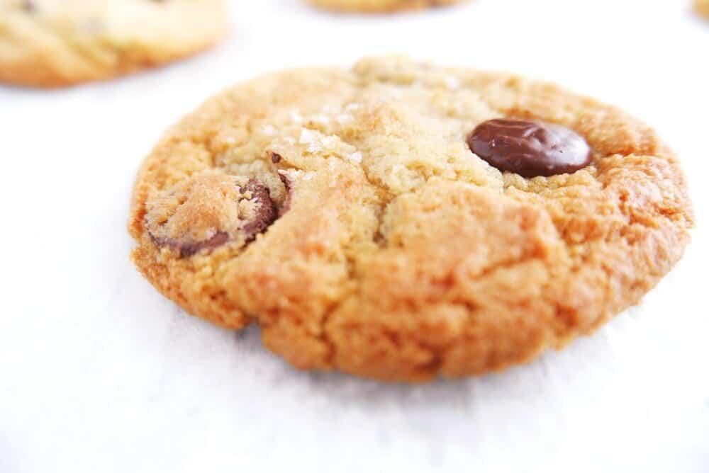 baked sea salt chocolate chip cookie close up