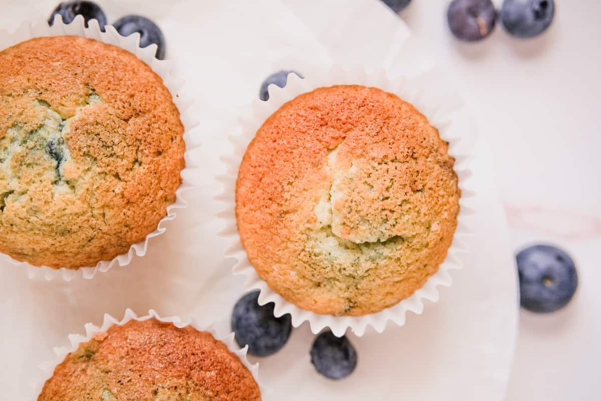 blueberry muffins without cinnamon streusell with a few loose blueberries on a plate