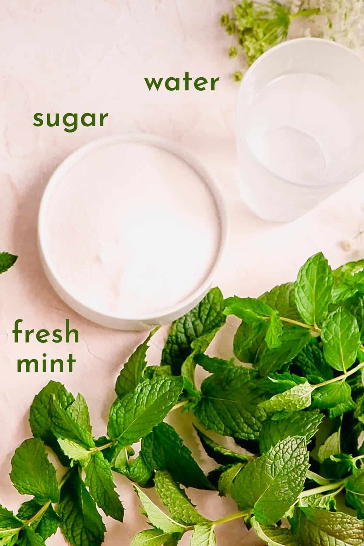 ingredients for making mint simple syrup in bowls.