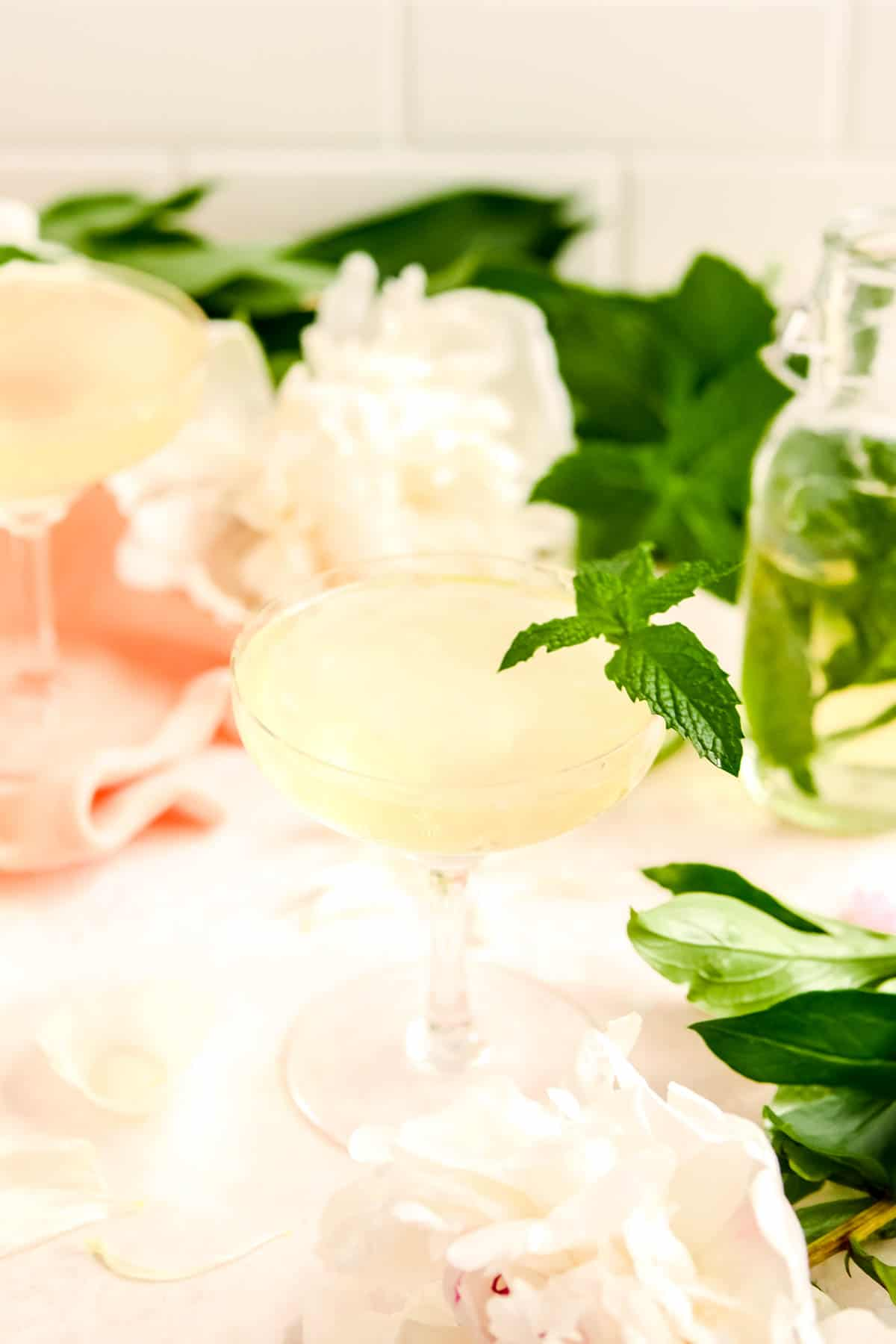 two coupe cocktail glasses from the side with a mint sprig in them and flowers on the table with a mint syrup bottle in the background.